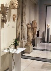 Ikebana-International Vienna Ausstellung im Ephesos-Museum