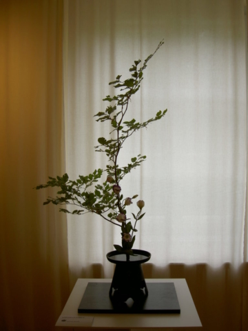 Ikebana-International Vienna Workshop im Schloss Fischau